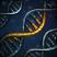 Адаптация генома