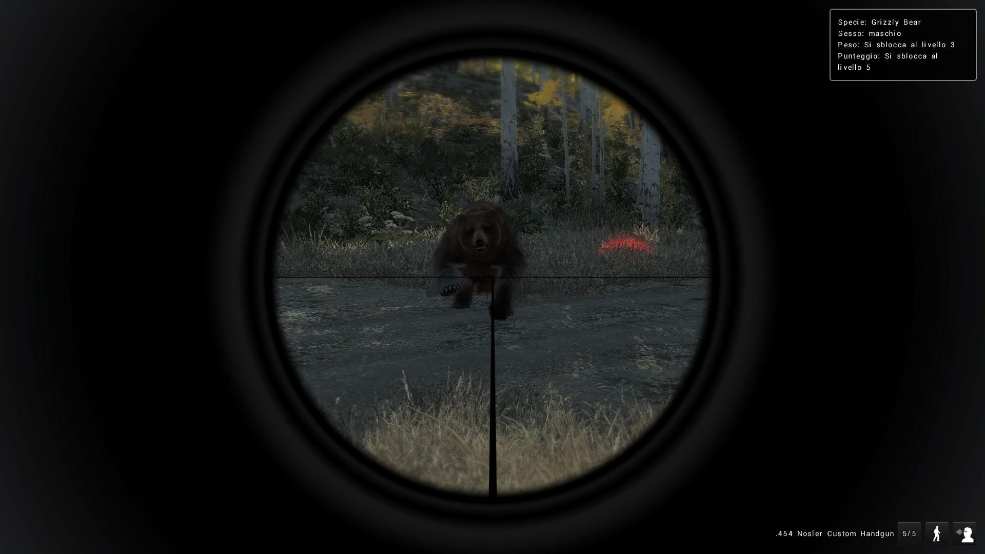 Grizzly Bear Attacchi e animazioni F758211F6E8805F4E1AB2B17A9F3F9B8F05F7E6D