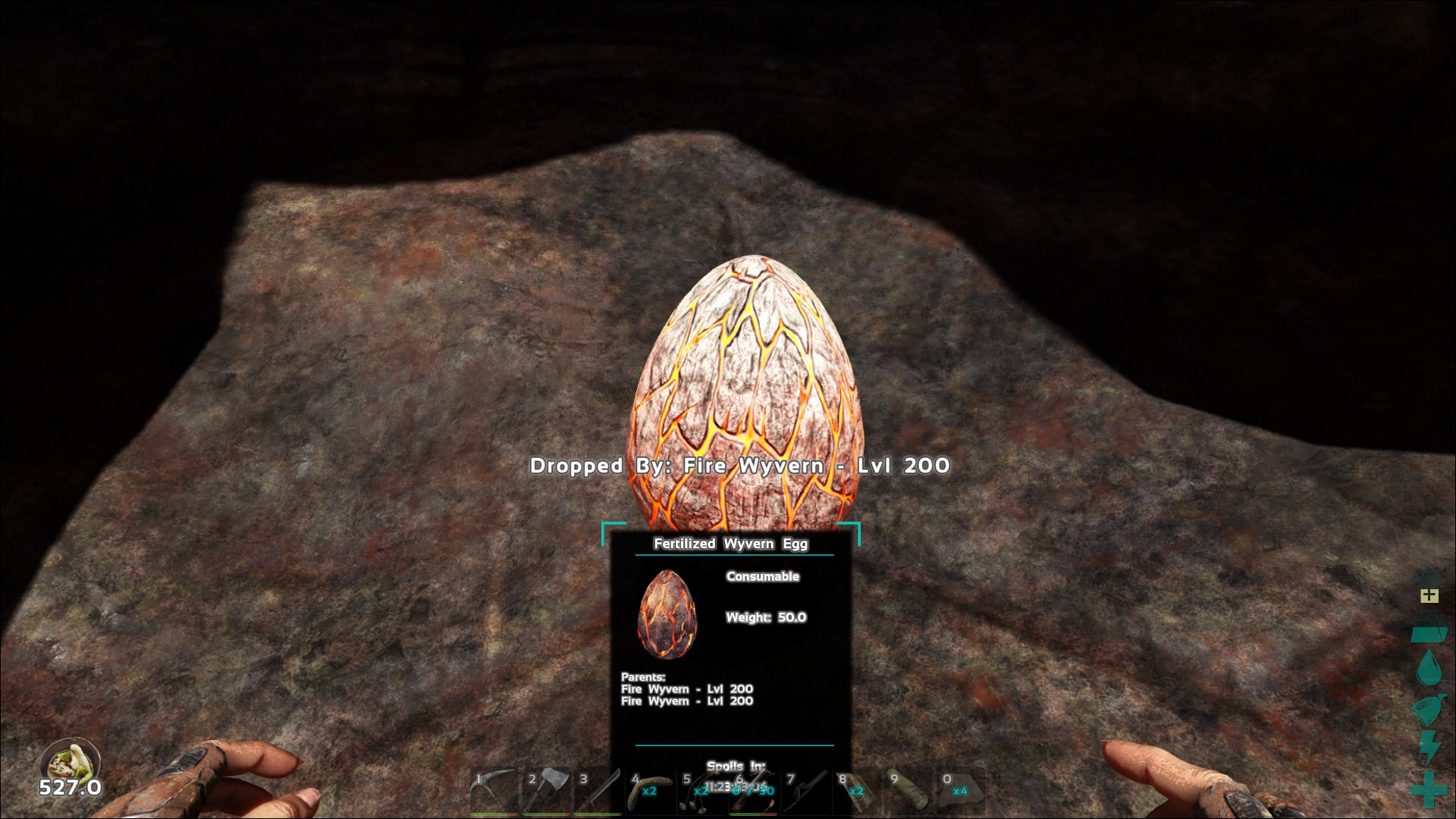 Wyvern Egg Study - General - ARK - Official Community Forums