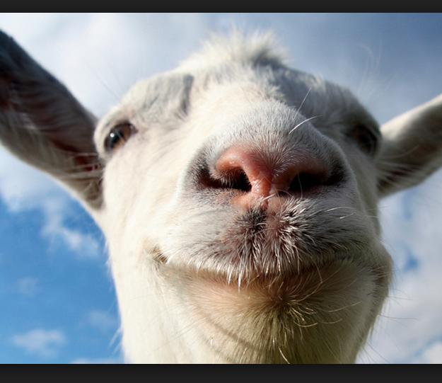 Secret Places Goat Simulator: Steam Workshop :: Goat Sim Maps