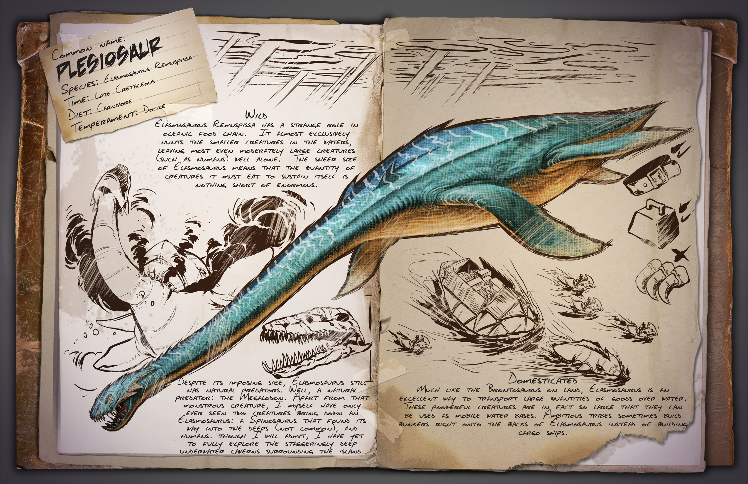 New Dino Dossier Introducing The Plesiosaur Friday The 5th Of June