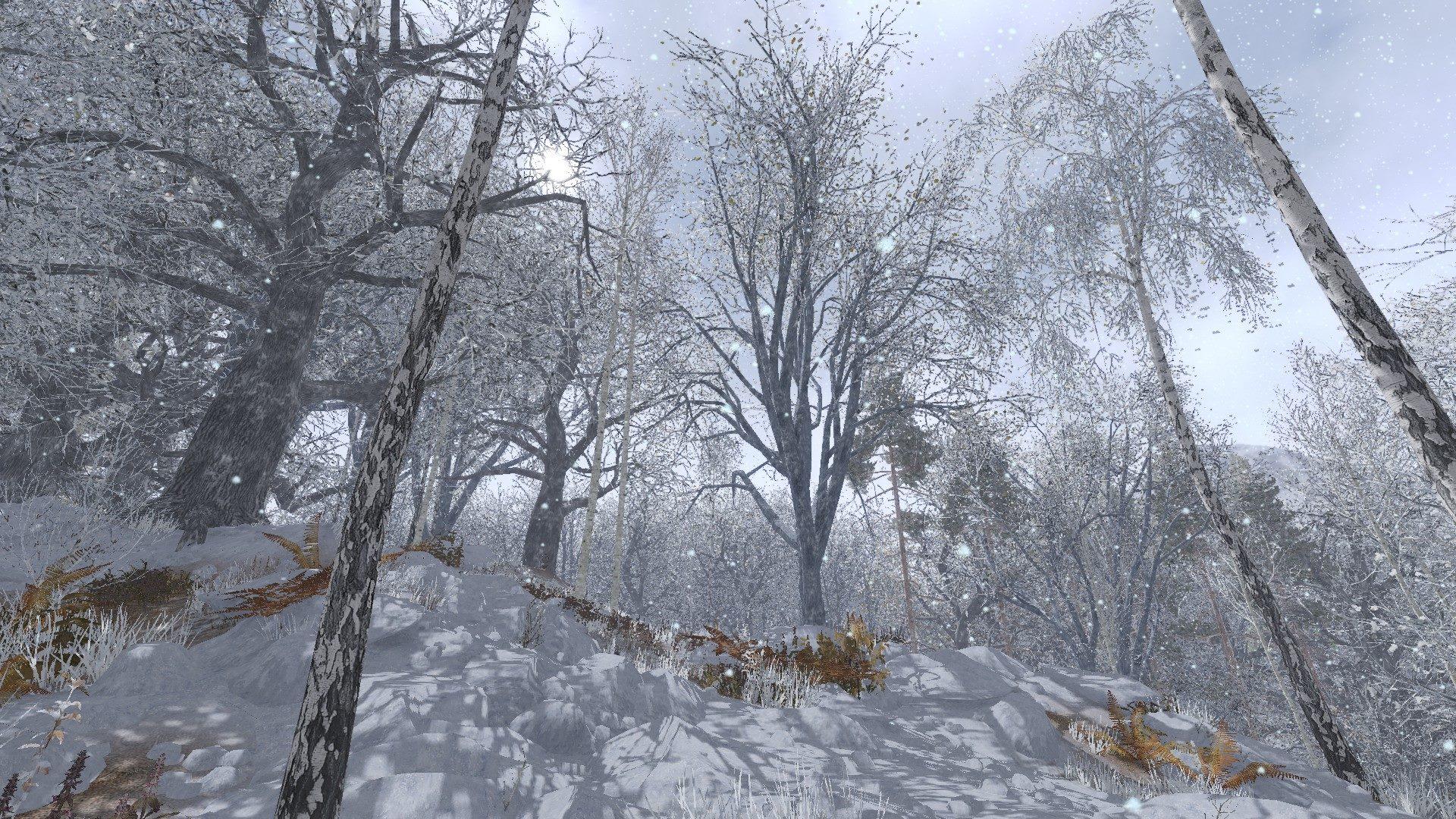 Life is feudal your own зима большая ролевая игра