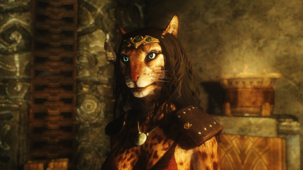 khajiit skyrim the elder - photo #25