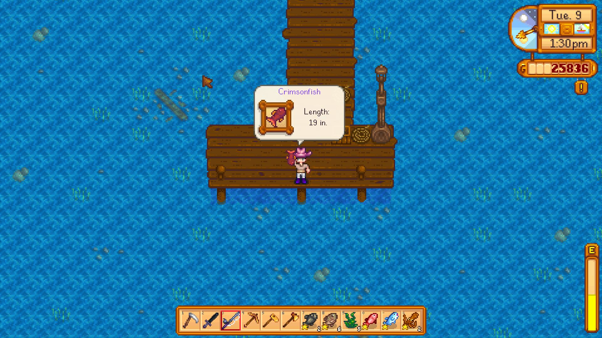 Best Food To Make As Gifts Stardew