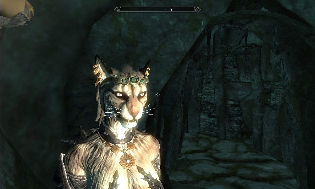 khajiit skyrim the elder - photo #17