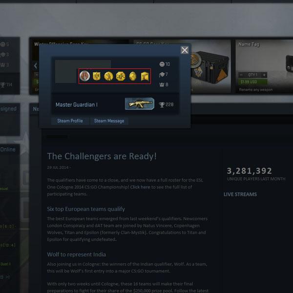 Cs go steam profile
