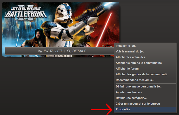 how to set definition in steam launch properties game