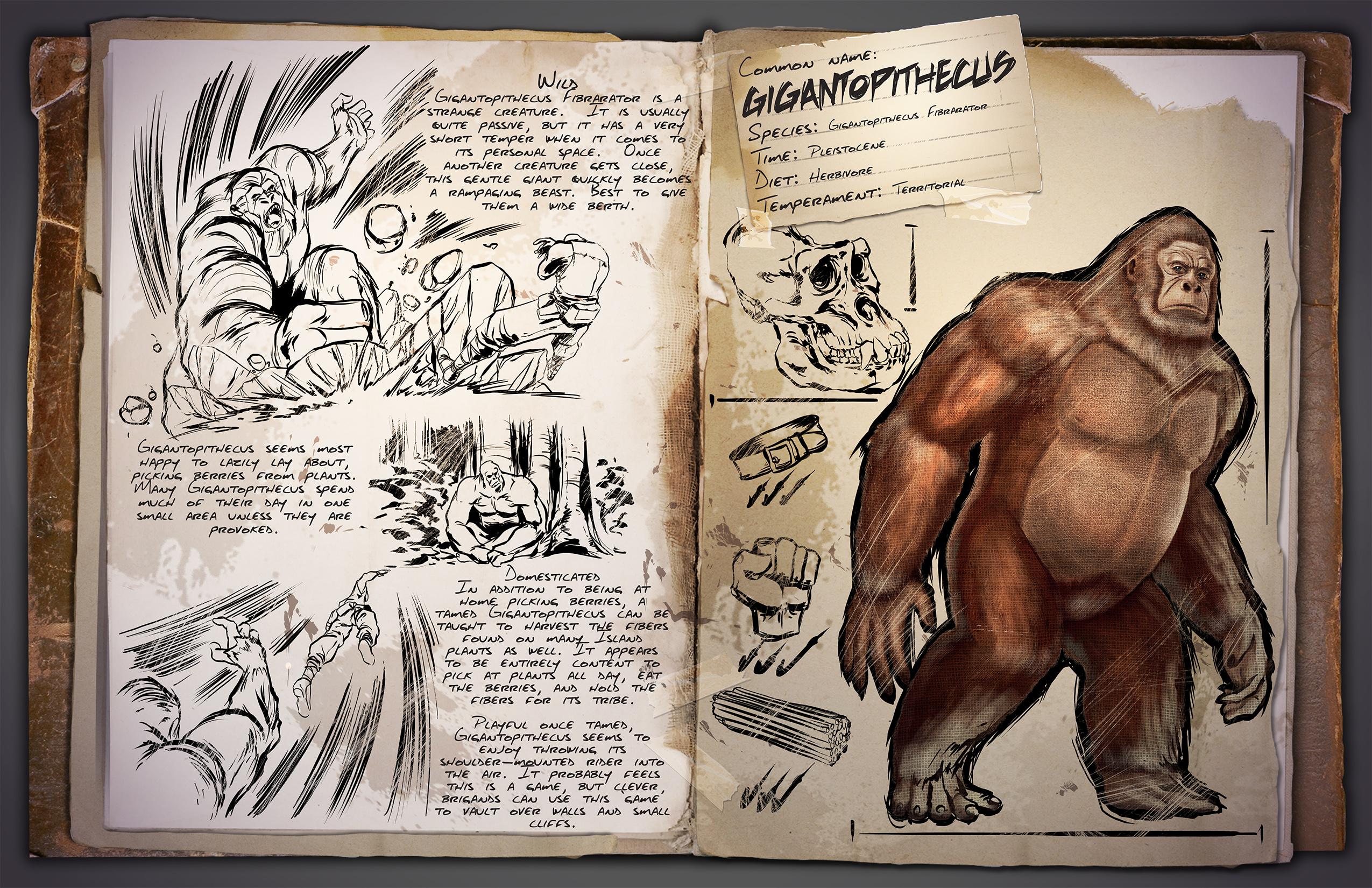 Gigantopithecus Gesichtet: Neuer Goril...