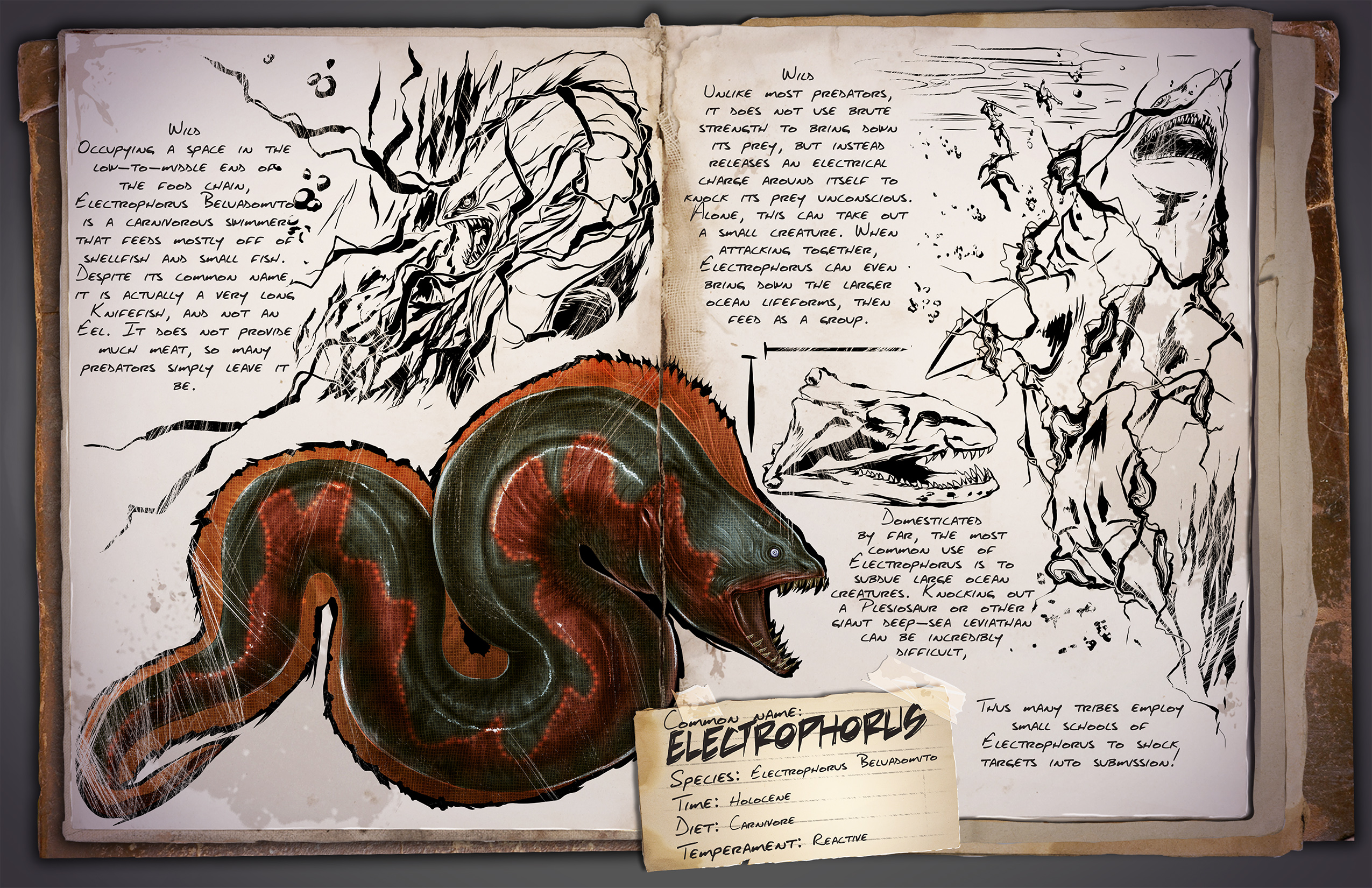 Introducing the electrophorus jurassic ark introducing the electrophorus malvernweather Choice Image