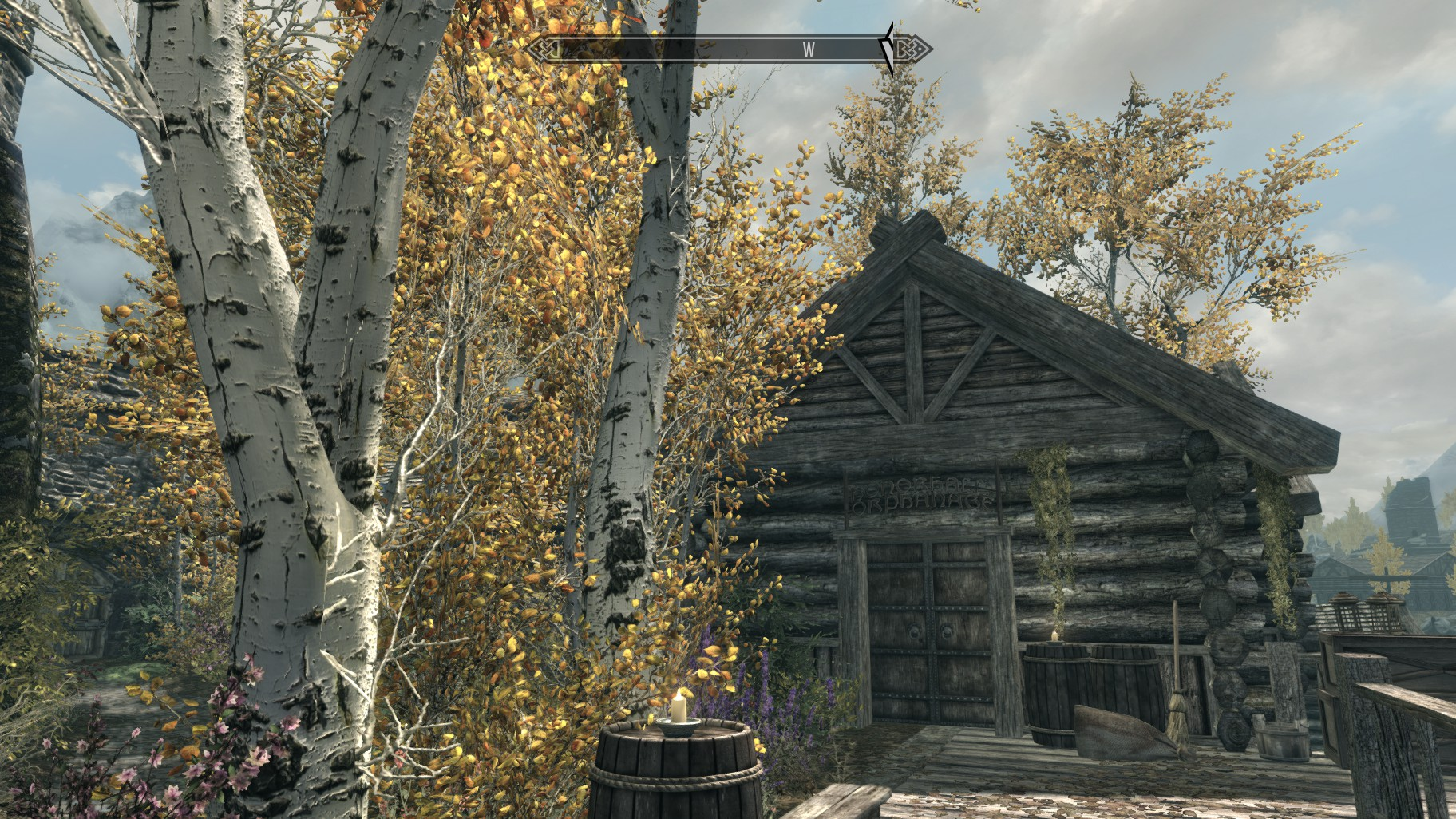 how to change the skyrim ini file for nmm