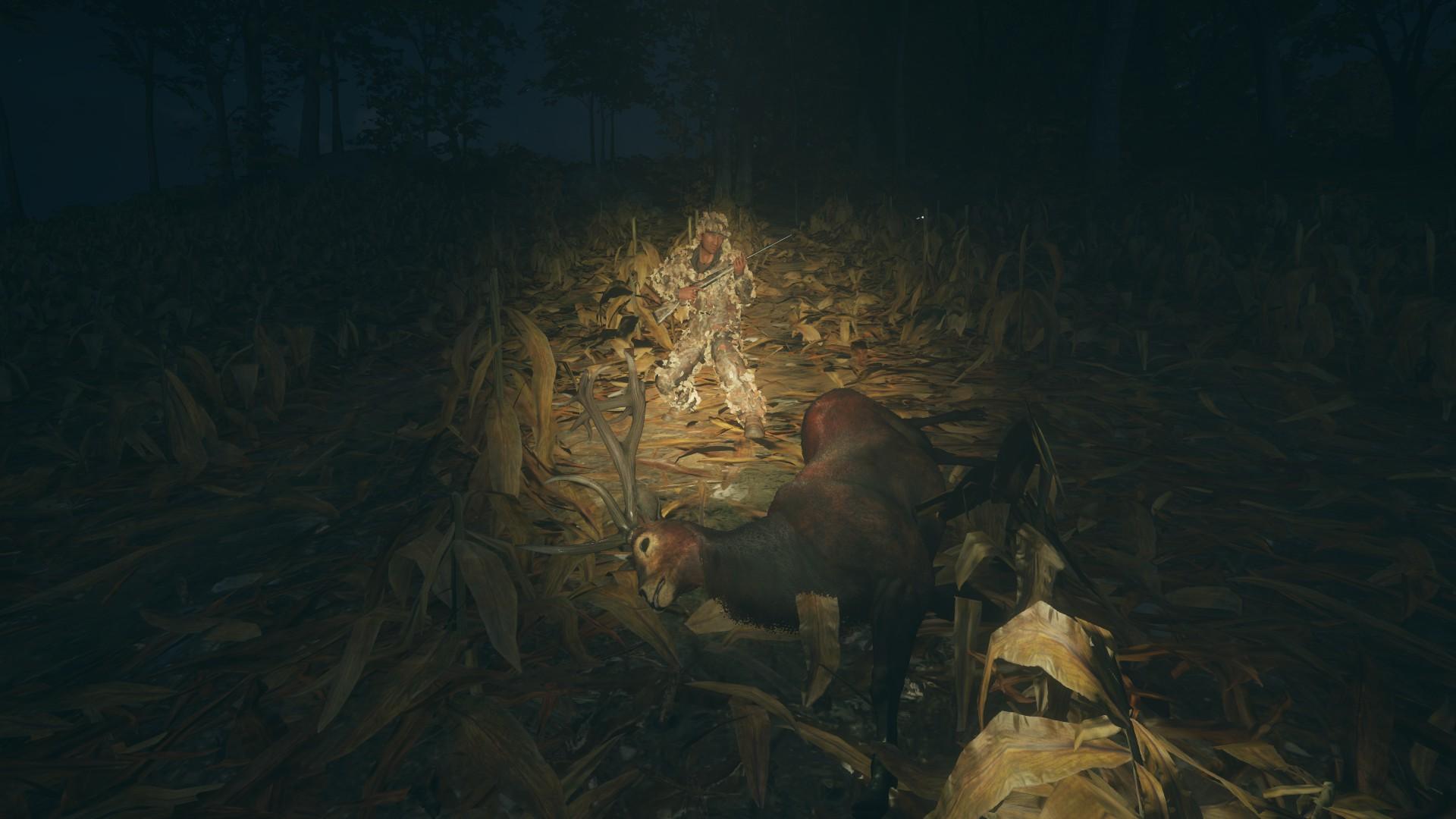Precioso lance a un Ciervo Rojo, record personal B503BD80FD7470A75E18F4A9720F1B719EEBE2E9